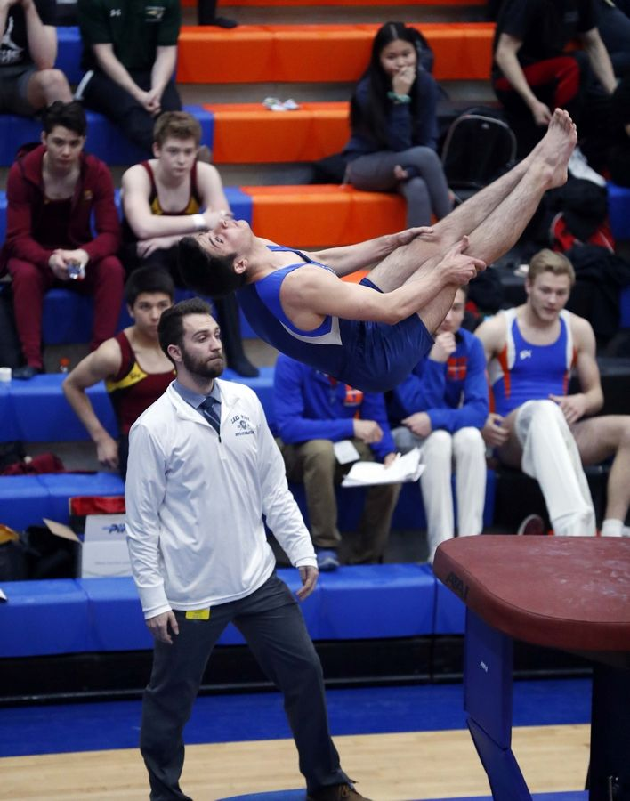 Louie Ranieri of Lake Park High School on the vault Saturday during the State boys gymnastics meet at Hoffman Estates High School.