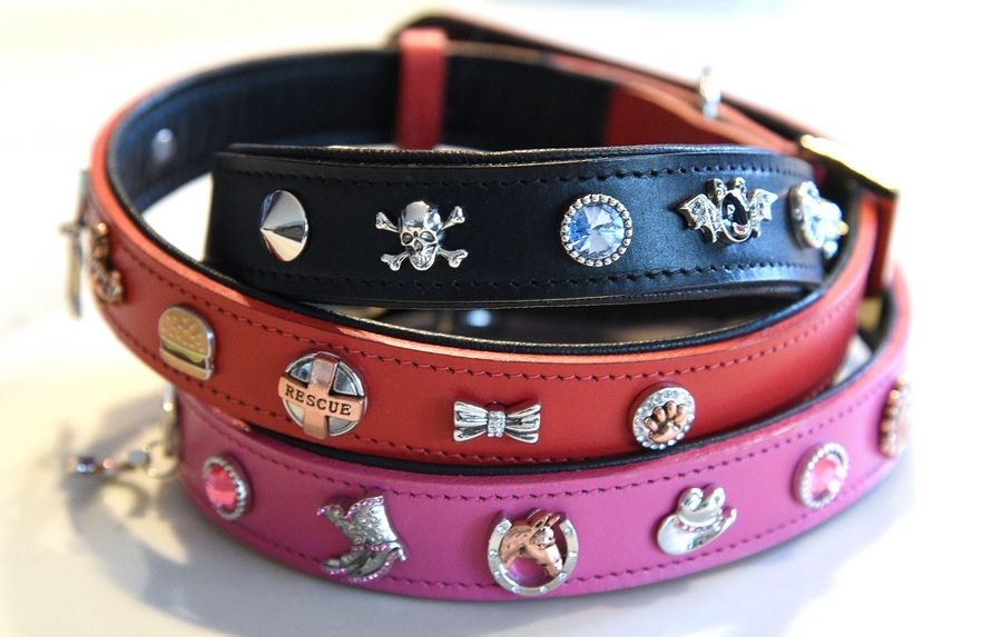Cheryl Arts and Carla Schultz have started an online business called Concha Collar, which sells customized leather collars for dogs or cats with attachable charms.